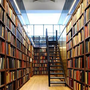 Библиотеки Асекеево